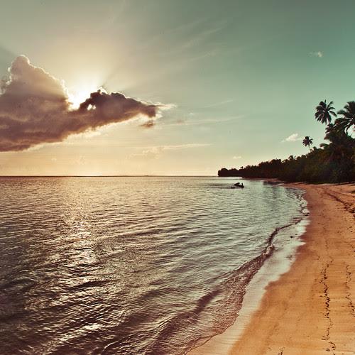 Tropical island palm tree / sun / sunlight / light / clouds / sea / sunset / natural light / retro / beach / ocean / wave / water ripple / vintage / summer / photography