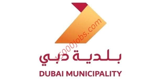 فرص وظيفية ببلدية دبي لمختلف التخصصات
