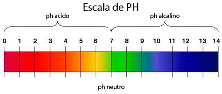 ¿Qué significa el nivel de ácido en el pH?
