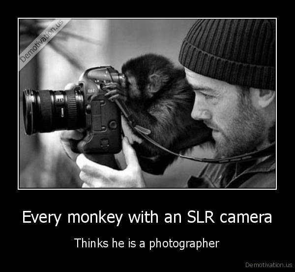 Every monkey with an SLR camera - Thinks he is a photographer