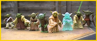 Yoda(s) in my back garden
