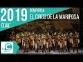 El circo de la Mariposa (Comparsa). COAC 2019