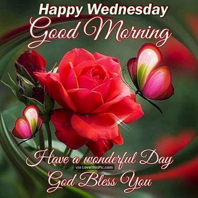 Happy Wednesday Good Morning Have A Wonderful Day Pictures Photos