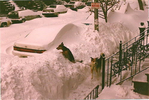 Em Blizzard of 96