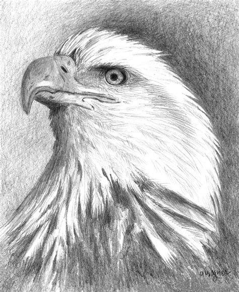 drawings art ideas design trends premium psd