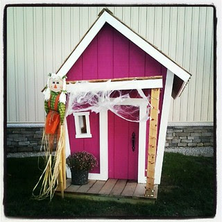 Lola & Sophie want this #dog house! #dogstagram #love #doghouse #halloween #fall #newhampshire