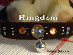 Kingdom - Pet Collar