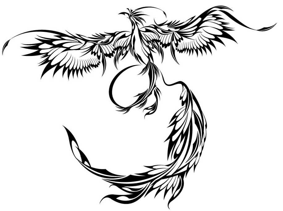 Phoenix Outline Drawing At Getdrawingscom Free For Personal Use