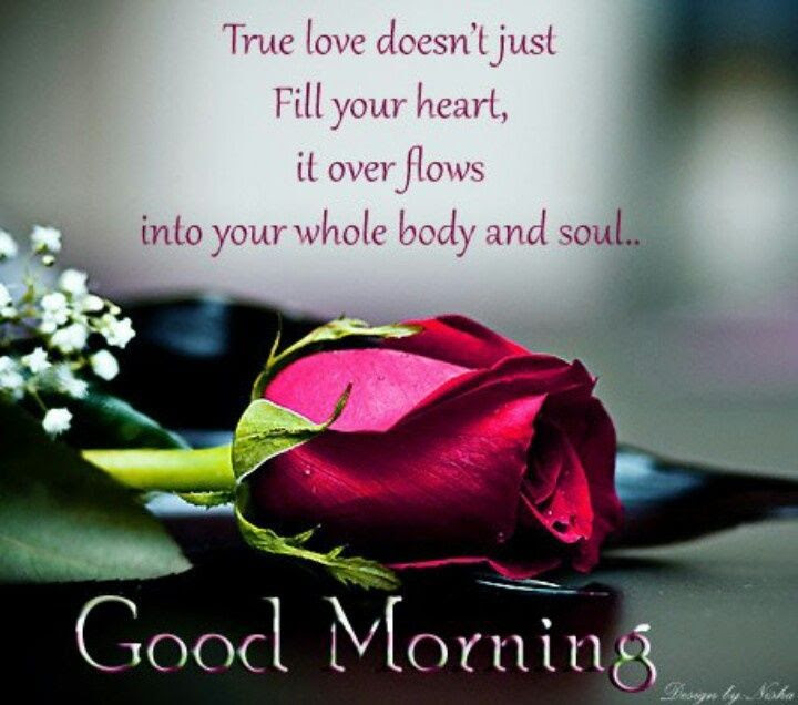 Good Morning True Love Pictures Photos And Images For Facebook