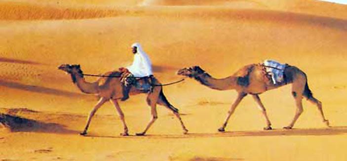 التجارة في الجزيرة العربية 3Smt9RxGFBzdsnuDPz3q5-ewT9K9Q9aiOex5TePASc-e9u_O1Hk49AyWlQ6riG_EHQBXTFEUjQ4xGcJjkwGodqx6x1_bJtUp=s0-d