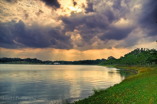 Another view of Bedok Reservoir Park