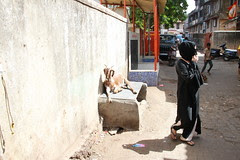 The Sacrificial Goat and The Muslim Woman At Crossroads by firoze shakir photographerno1