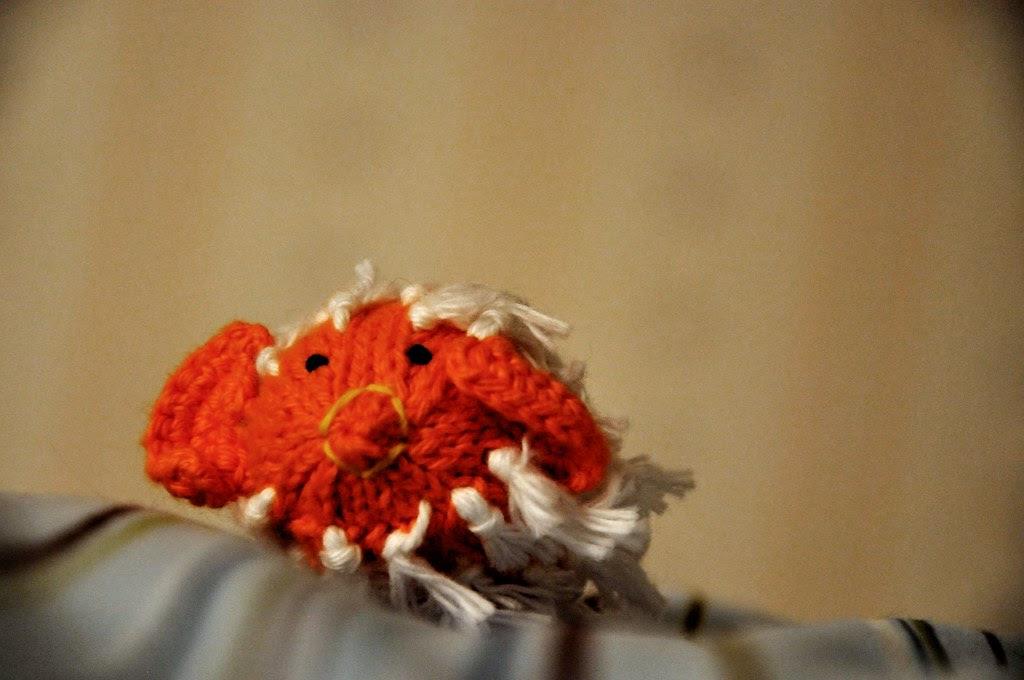 Buddy the Blowfish