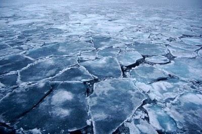 Cientistas preveem oceano Ártico sem gelo em 40 anos