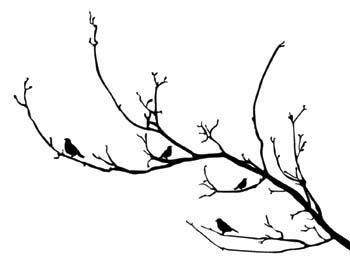 Illüstrasyon Ağaç Dalında Kuşlar Duvar Kağıdı