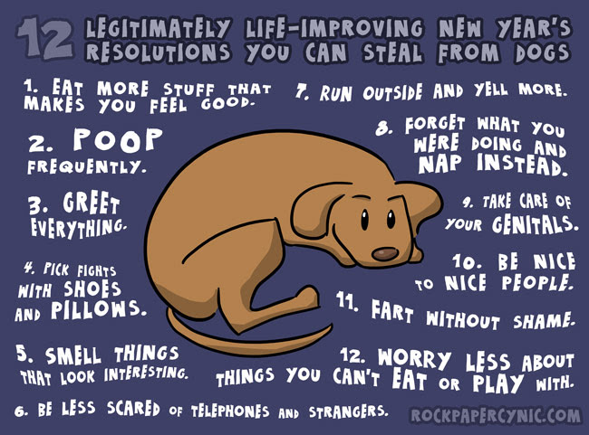 New Year's Resolutions to steal from dogs