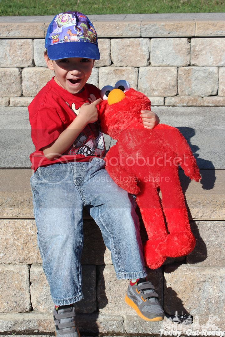 Teddy Big Hugs Elmo