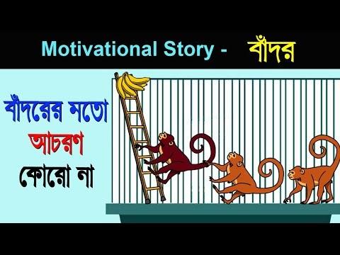 বাদঁরের মত আচরণ করো না   short motivational story in Bengali   Positive story bangla