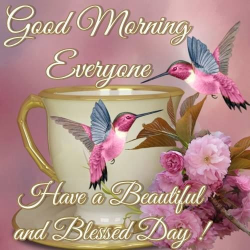 Good Morning Everyone Have A Beautiful And Blessed Day Pictures