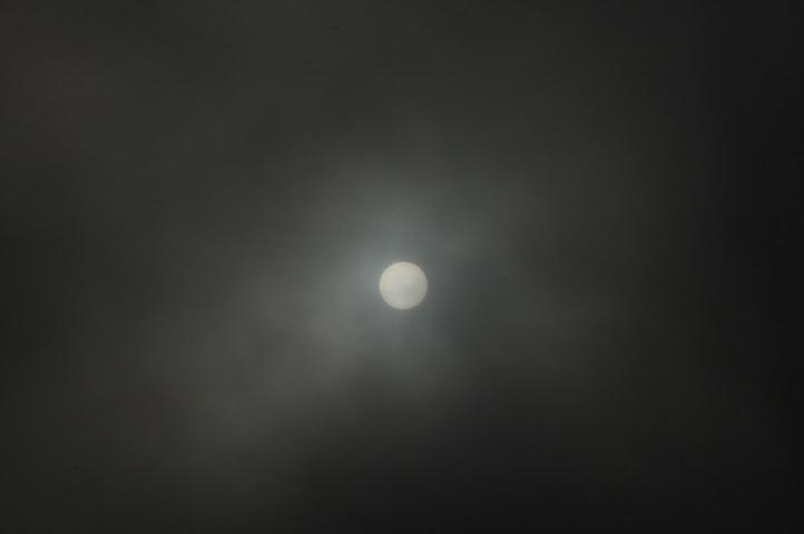 sun_8272 web