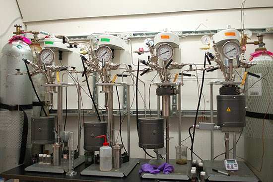 Biopneus: Processo produz pneus renováveis de biomassa