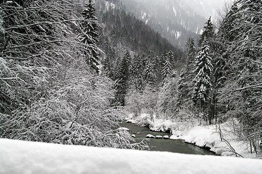 Wildbad kreuth wald und berge 07.01.2012 13-31-09.2012 13-31-09