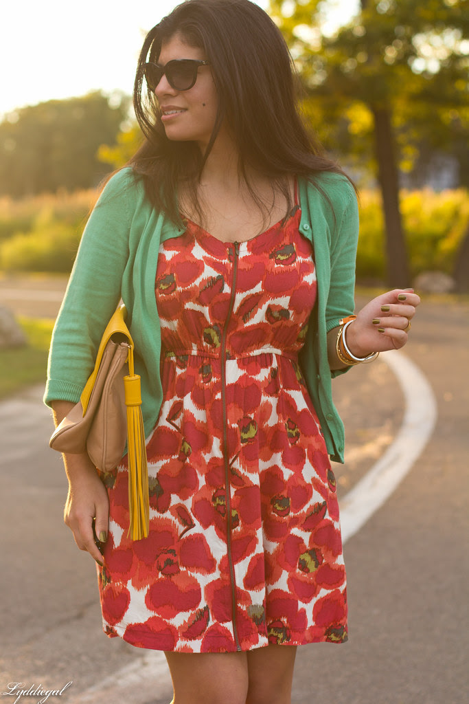 poppies-6.jpg