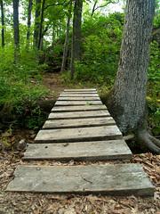 Seven Hollows Trail