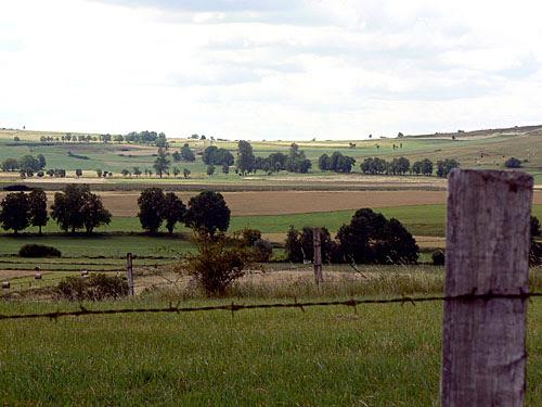 paysage talizat 1.jpg
