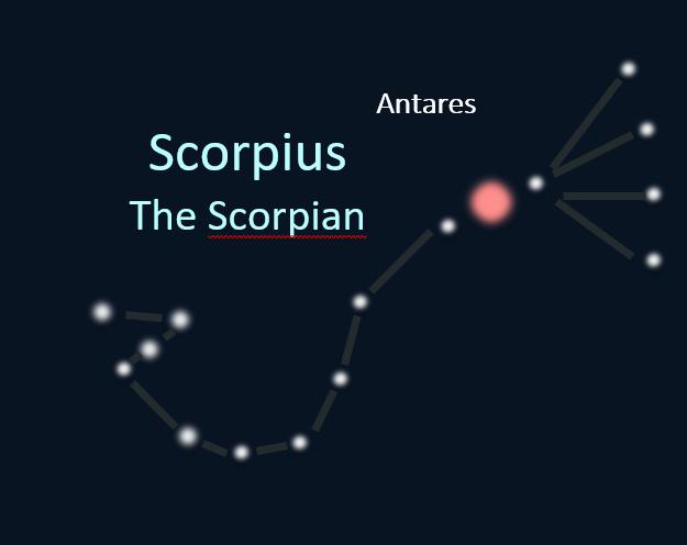 Constellations En Vedette Les Oiseaux Dété