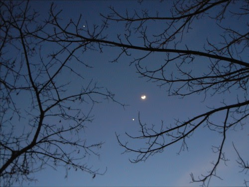 Moon, Venus & Jupiter, 25 February 2012 _ 0311 - 500