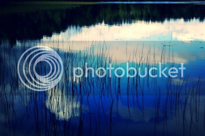 photo d8589cef-7974-4cf9-b0fb-5e26e00309d1_zps0f0f7664.jpg