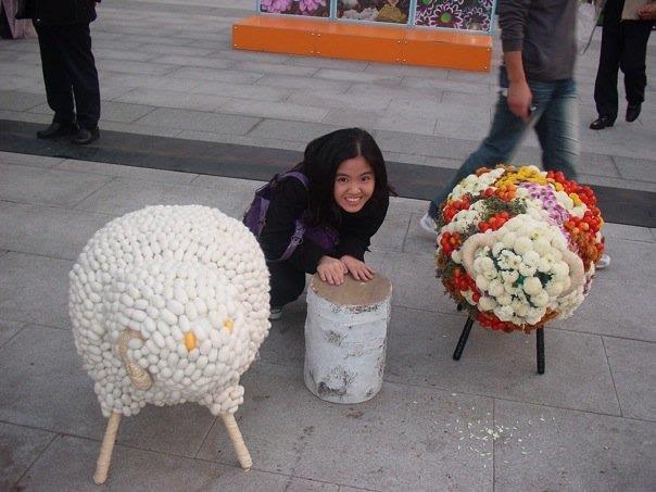 flower exhibit