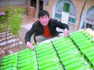 A Chinese farmer has made his own solar-powered water heater out of beer bottles and hosepipes.