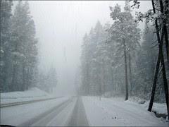 Driving Highway 50