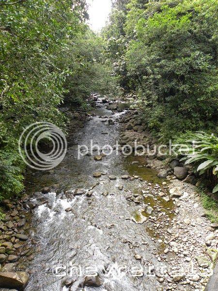 http://i1252.photobucket.com/albums/hh578/chevrette13/Guadeloupe/DSCN6553Copier_zps8f3bd0d5.jpg
