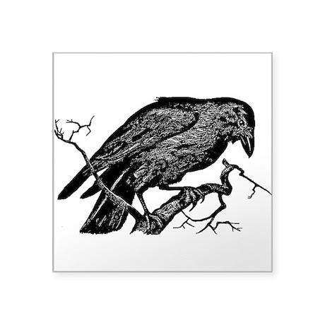 Download Vintage Raven in Tree Illustration Square Sticker by VoxVintage