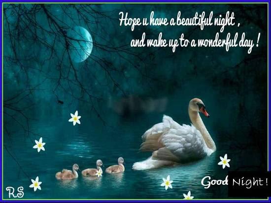 A Good Night Wish Free Good Night Ecards Greeting Cards 123