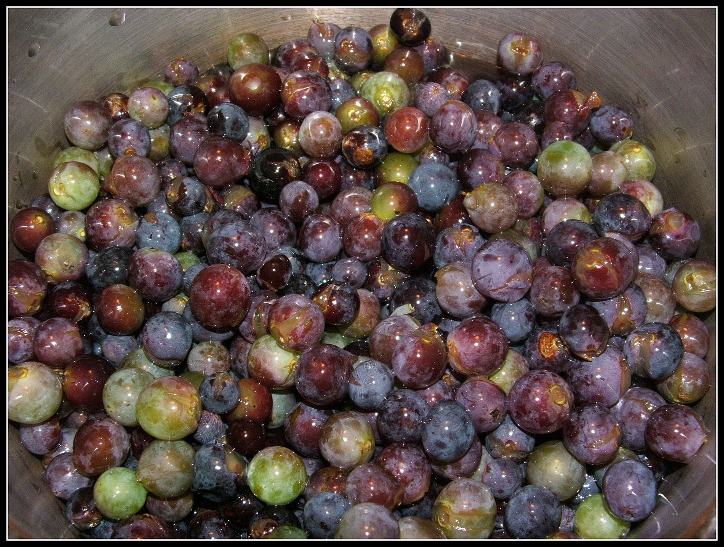 Grape Jelly by Angie Ouellette-Tower for godsgrowinggarden.com photo 009_zps16710ad8.jpg