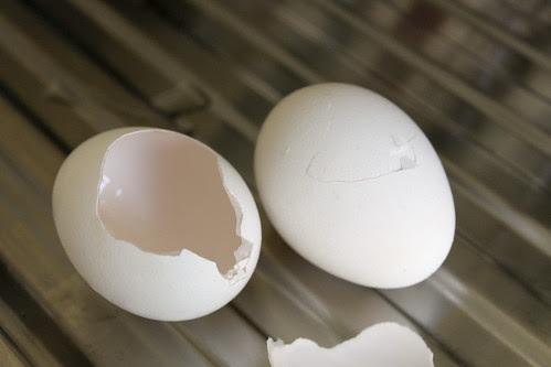 Eierschale kaputt