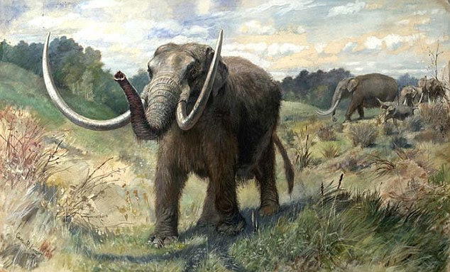 Image: An artist's impression of what a mastodon would have looked like, based on the skeletons found across the world