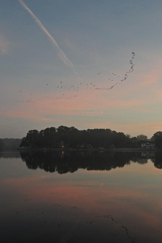 Lafayette Sunrise 3