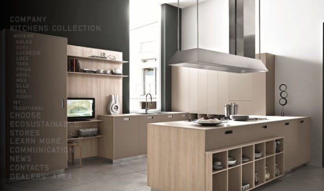 beech modern kitchen
