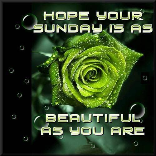 Have A Great Sunday Image Archidev