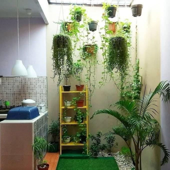 Desain Taman Samping Rumah Minimalis | Ide Rumah Minimalis