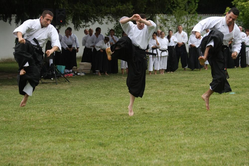 Federația Română de Karate Tradițional, zece ani de Patronaj Regal