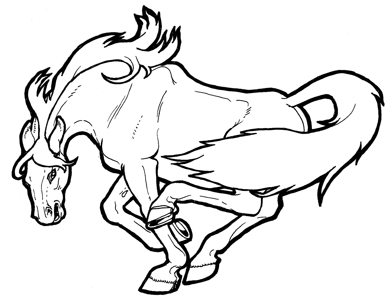 Bucking Horse Coloring Pages at GetColorings.com | Free ...
