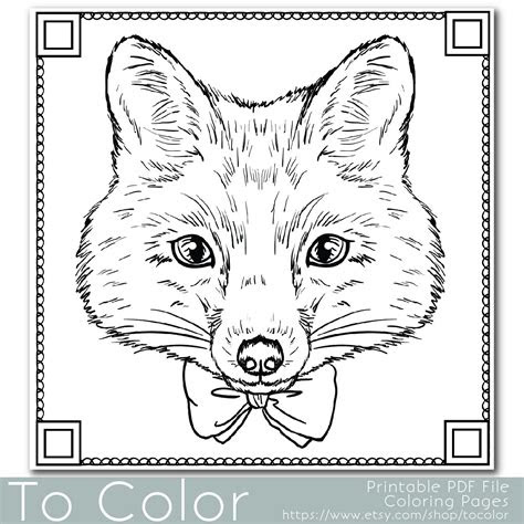 fox coloring page  adults  jpg instant