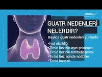 Guatr Hastalığı ve Tedavisi (Guatr Nedir?) - Anadolu Sağlık Merkezi