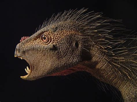 What Did Dinosaurs Really Look Like?